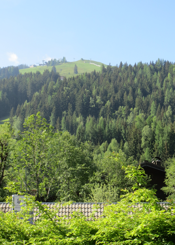 Asitz Mountain view from apartment image4
